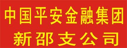 中国平安综合金融集团新邵支公司